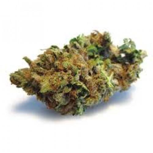 Семена марихуана Amnesia Lemon Feminised