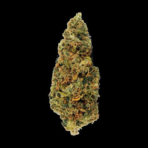 Семена марихуана Auto Bob feminised