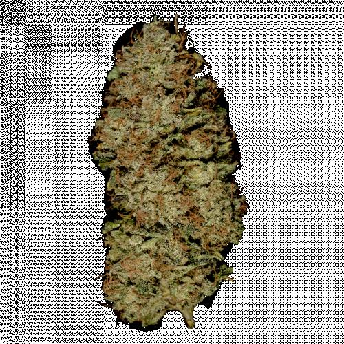 Семена Auto Opium - фото 1