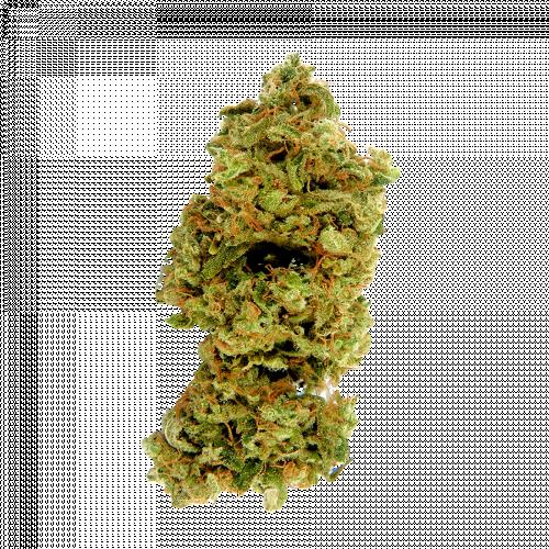 Семена марихуана Russian Bear