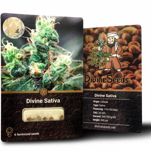 Купить семена Divine Sativa