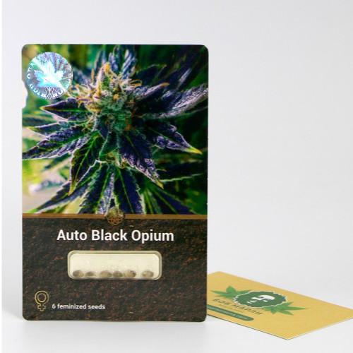 Купить семена Auto Black Opium