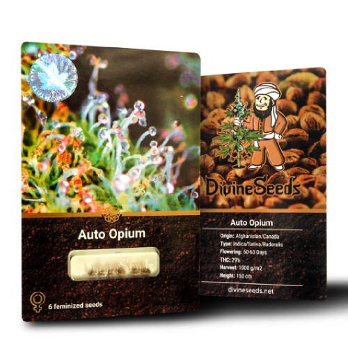 Семена марихуана Auto Opium