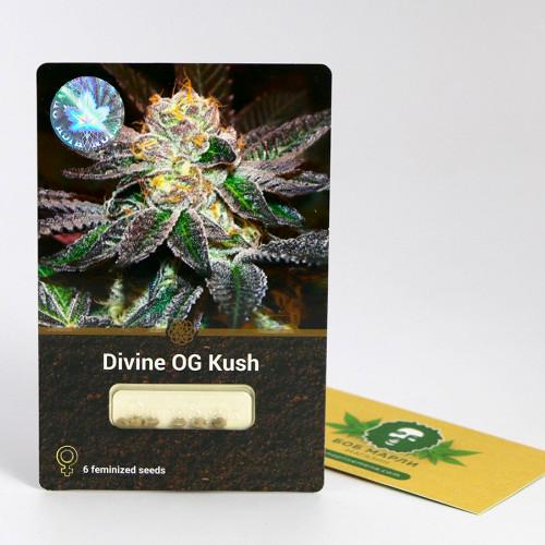 Семена марихуана Divine OG Kush