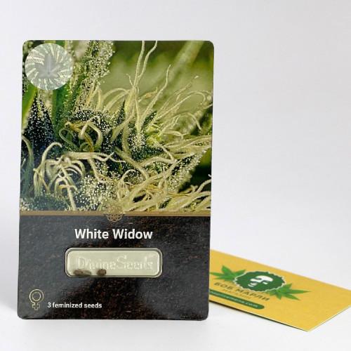 Купить семена White Widow