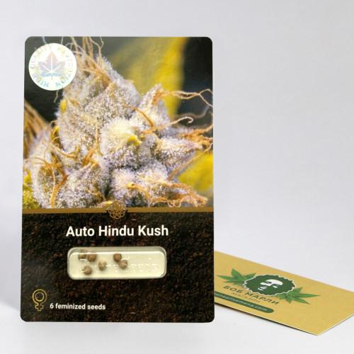 Auto Hindu Kush