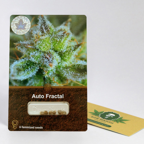 Купить семена Auto Fractal