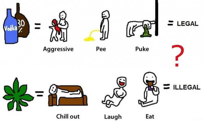 Смешивать алкоголь и марихуану чем запивать коноплю когда куришь