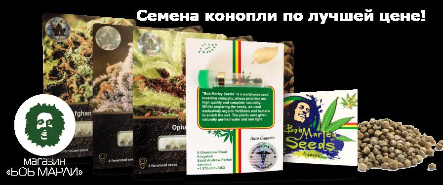 Купить семена в Киеве