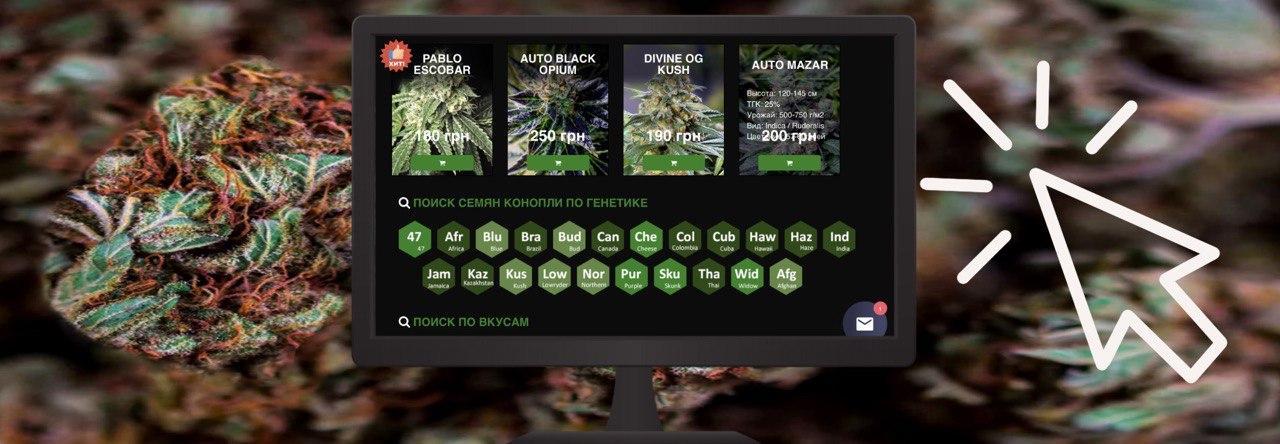самые лучшие сорта марихуаны